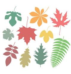 Leaf Icon Autumn vector image