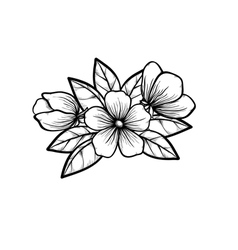 branch of a blossoming tree in graphic black white vector image