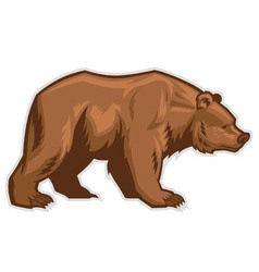 brown bear mascot vector image vector image