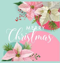 Christmas winter poinsettia flower banner vector
