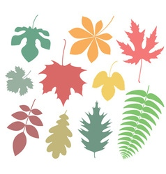 Leaf Icon Autumn vector image