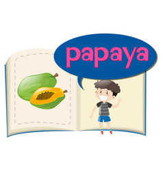 Vocabulary book with word papaya vector