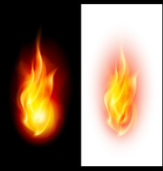 two fire flames on contrast black and white vector image