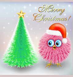 christmas pictures with a furry bird and a vector image