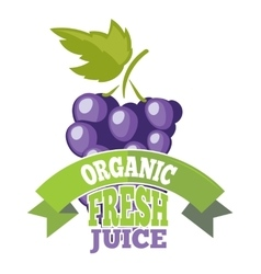 Natural grapes juice logo label vector