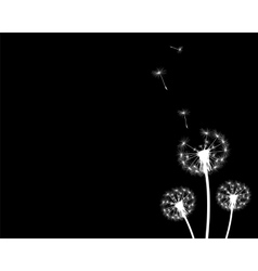 silhouette with flying dandelion buds vector image