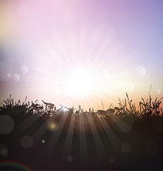 Silhouette of grass and plants against sunset sky vector image vector image