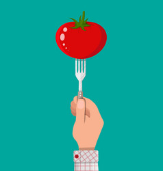 Tomato vegetable on fork in hand vector
