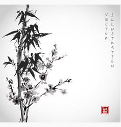 bamboo and sakura in blossom vector image
