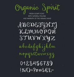 Organic spirit brush script alphabet vector