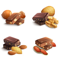 Chocolate With Nuts vector image