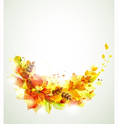 Autumn branch vector
