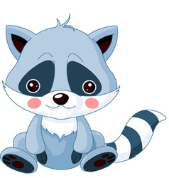 Raccoon vector