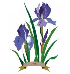 Iris flowers bouquet vector