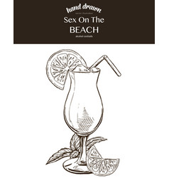 sex on the beach composition vector image vector image