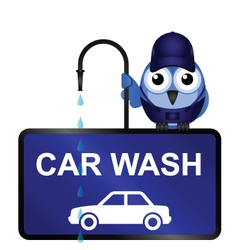 Car Wash Sign vector image