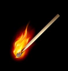 burning match on a black background for design vector image