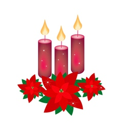 Red poinsettia flowers and three christmas candles vector