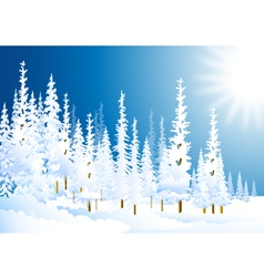 Morning winter forest vector