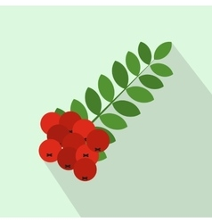 Branch of of rowan icon flat style vector image