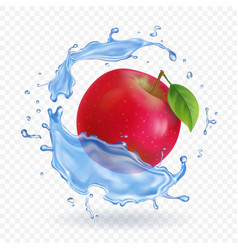 red apple realistic fruit in water splash vector image