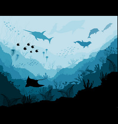 Underwater wildlife scat shark dolphins vector