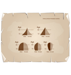 Different types of population pyramids on old pape vector