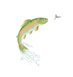 American-trout-jumps vector
