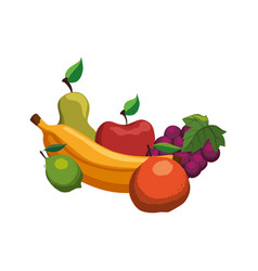 delicious set of fruits vector image