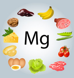 Foods rich in magnesium vector