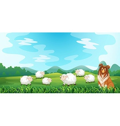 Sheeps and hound vector
