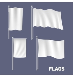 Realistic flags set vector