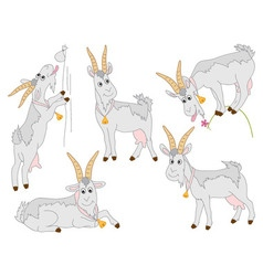 Goats set vector