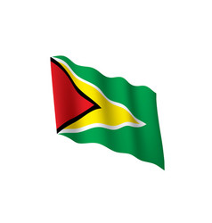 Guyana flag vector