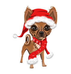 Little dog in a red santa claus hat vector