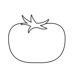 Tomate vegetable icon vector