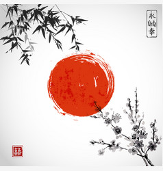 bamboo leaves sun and sakura blossom vector image