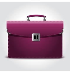 Business briefcase isolated on blue background vector image