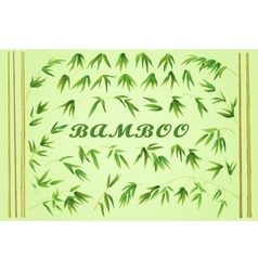 Bamboo Stems with Green Leaves vector image vector image