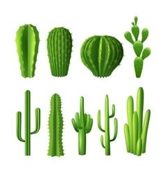 Cactus Realistic Set vector image vector image