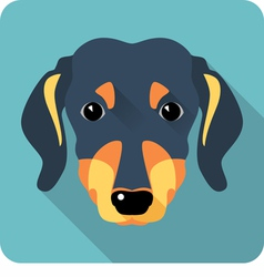 Dog dachshund icon flat design vector
