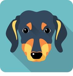 dog dachshund icon flat design vector image