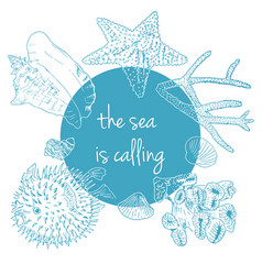 Sea is calling marine background with seashells vector