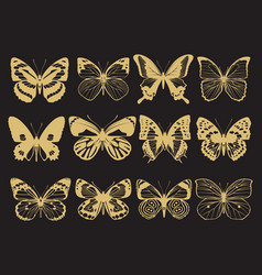 golden butterflies collection vector image vector image