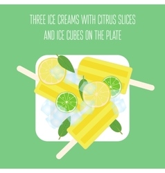 Ice creams popsicles with mint leaves citrus vector