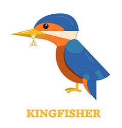 Kingfisher bird icon vector