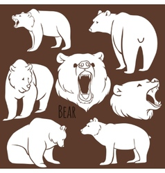 Set of wild bear silhouettes on the background vector image