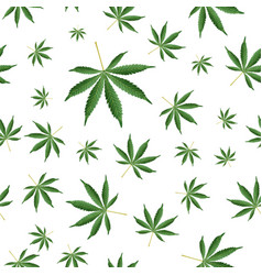 cannabis background marijuana ganja weed hemp vector image