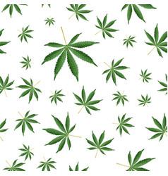 cannabis background marijuana ganja weed hemp vector image