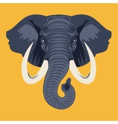 Elephante vector